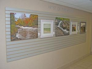 Sterling Heights Artist Of The Month